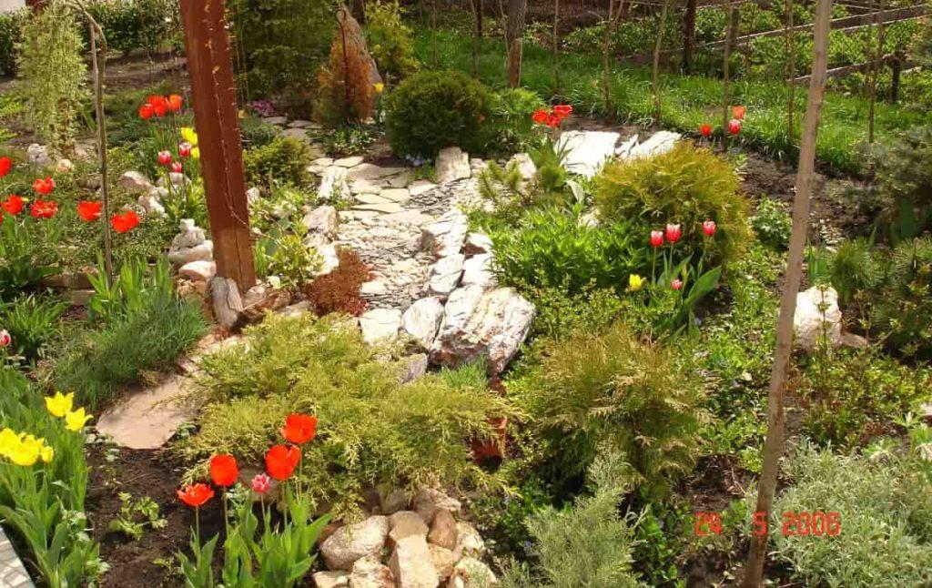 легкий сад