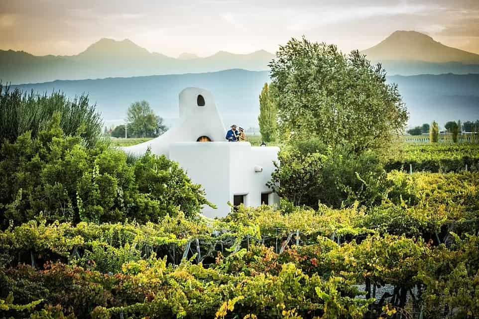 отель с красивым видом CAVAS WINE LODGE, АРГЕНТИНА